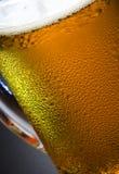 beer mug στοκ φωτογραφίες