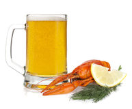 Beer mug and boiled crayfish Stock Images