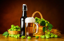 Beer Mug and Bottle with Hop Flower Stock Image