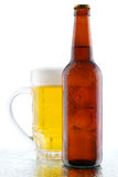 Beer mug and bottle  on white background Stock Images