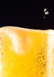 Beer mug with froth Stock Photography