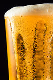 Beer mug with froth. Over black background royalty free stock photography