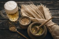 Glass of frothy beer, malt and hop. Beer in the mug glass with malt and hop and rye ears on the aged wooden table background stock images