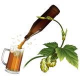 Beer mug, hop, bottle. Beer is poured from the bottle into the mug. Branch of hops Royalty Free Stock Images
