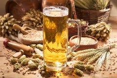 Beer mug. With hops, wheat, grain, barley and malt Royalty Free Stock Photo