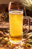 Beer mug. With hops, wheat, grain, barley and malt Royalty Free Stock Photography