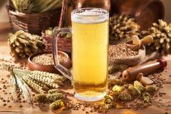 Beer mug. With hops, wheat, grain, barley and malt Stock Photos