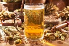 Beer mug. With hops, wheat, grain, barley and malt Stock Image