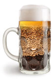 Beer mug with malt  on a white background. Beer mug. Creative beer mug filled with different malted grains Royalty Free Stock Photography