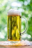 Beer Mug Outdoors in the Sun Royalty Free Stock Photo