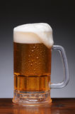 Beer Mug on Wet Wood Surface Stock Image
