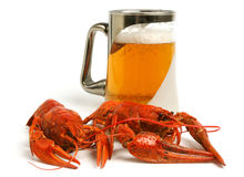 Beer Mug With Crawfishes Stock Photos