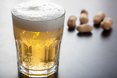 Beer and nuts Royalty Free Stock Photos