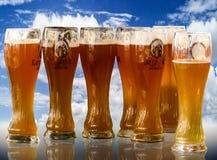 Beer, Oktoberfest, Beer Glass Royalty Free Stock Photo