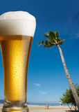 Beer On Beach Royalty Free Stock Photo
