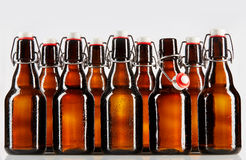 Beer packaged in clear brown unlabeled bottle Royalty Free Stock Image