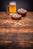 Beer and peanuts Stock Image