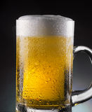 Beer pour. Beer glass with drops on dark background Royalty Free Stock Photo