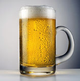 Beer pour. Beer glass with drops on dark background Royalty Free Stock Image
