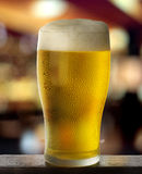 Beer pour. Beer glass with drops on dark background with bar lights Stock Photography
