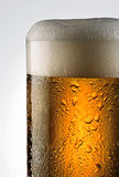Beer pour. Beer glass with drops on white background Stock Images