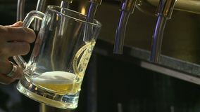 Beer is poured. In The bar poured beer in a glass stock footage