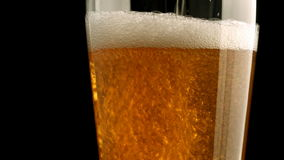 Beer poured in glass stock video