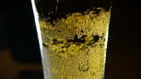 Beer poured into a glass with bubble. Closeup stock video footage
