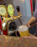 Beer is poured into a glass Royalty Free Stock Image