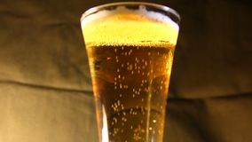 Beer poured into a glass. Closeup stock video