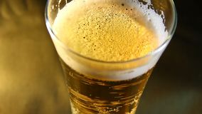 Beer poured into a glass. Closeup stock footage
