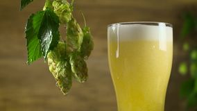 Beer is poured into the glass stock footage
