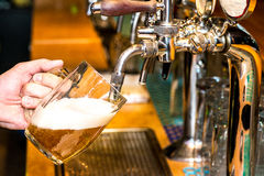 Beer pouring Stock Image