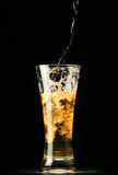 Beer pouring into glass Stock Photography