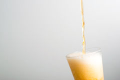 Beer pouring into a glass Royalty Free Stock Photo
