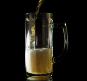 Beer pouring into a tall mug isolated Stock Photography