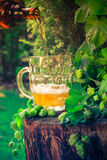 Beer pouring tankard bottle Stock Photo