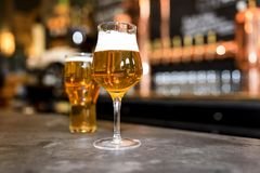 Beer on a pub. Glasses of light beer on a pub background Royalty Free Stock Photo