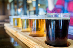 Beer samplers in unique wooden tray Royalty Free Stock Photos