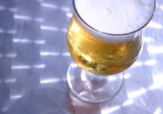 Beer on Shiny Table. Glass of beer on metallic table from above Stock Image