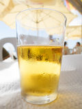 Beer short glass Stock Images