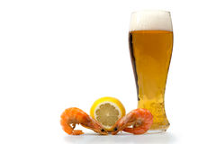 Beer with shrimp Stock Photos