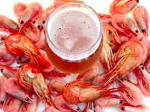 Beer and shrimps (prawns). Beer in glass and snack - shrimps (prawns) in shells stock photos