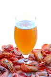 Beer and shrimps (prawns). Beer in glass  and  snack - shrimps (prawns) in shells Stock Photography
