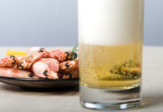 Beer and snack. Shrimps and a glass with beer, focus on shrimps Stock Photography