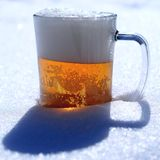 Beer snow sun ight spring day. Beer on snow sun ight spring day Royalty Free Stock Photo