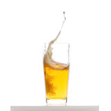Beer splash. In the glass, on white background Stock Images