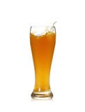 Beer splash. In glass isolated on white Stock Images