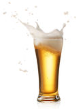 Beer splash. Glass of splashing beer isolated on white royalty free stock image