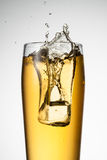Beer splash with ice isolated Stock Photos